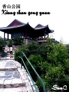 香山公園 北京 旅行 Beijing travel 香山公園